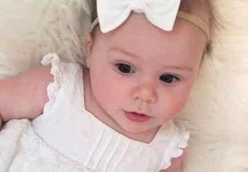 Baby Hair Bow, Baby Headband, Newborn Hair Bow, Hair Accessories, Nylon Headband, Baby Bow, Infant Hair Bow, Infant Headband