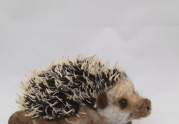 Harry Hedgehog