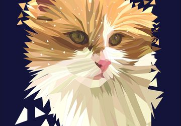 Custom Pet Portrait - Cat Portrait