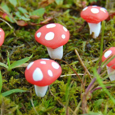 mushrooms garden succulent terrarium clay sculpted cute sculpey sculpture fairy polymer red accessories