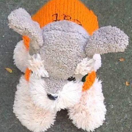 dog petite sweater