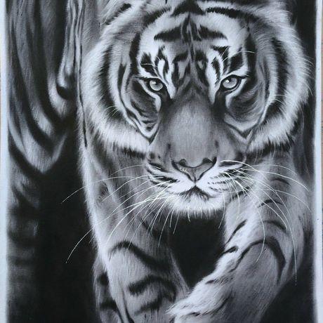 oilonpaper animalart wildlifeart animaldrawing tigerart originalart wallart tiger artwork
