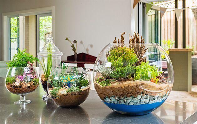decor flowers handmade workplace decorate water green diy beautiful handicraft nature greenterrarium