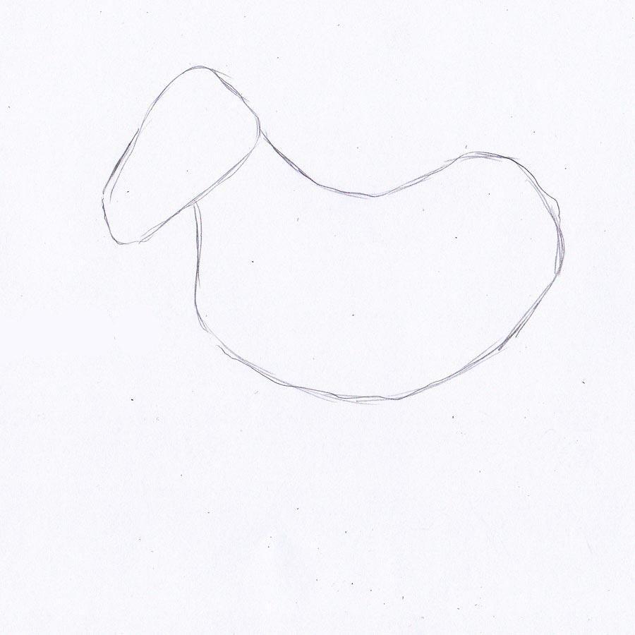 draw picture pencil zebra gradually