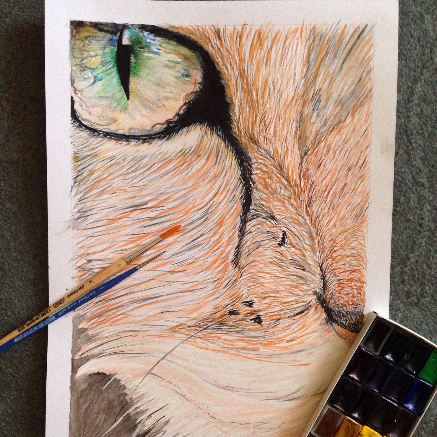 art cat painting interior watercolor